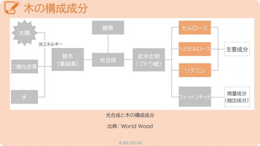 23木の構成成分