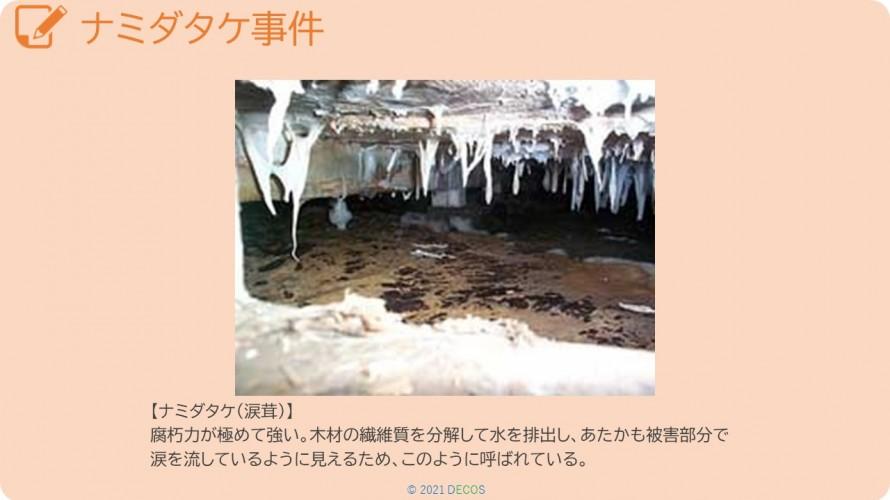 71ナミダタケ事件